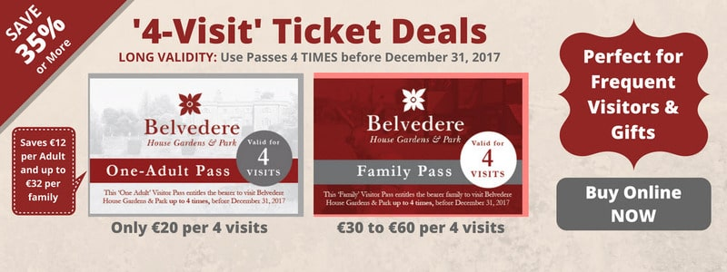 Visit Ticket Deal